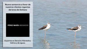 Sentencia regantes Área de Doñana